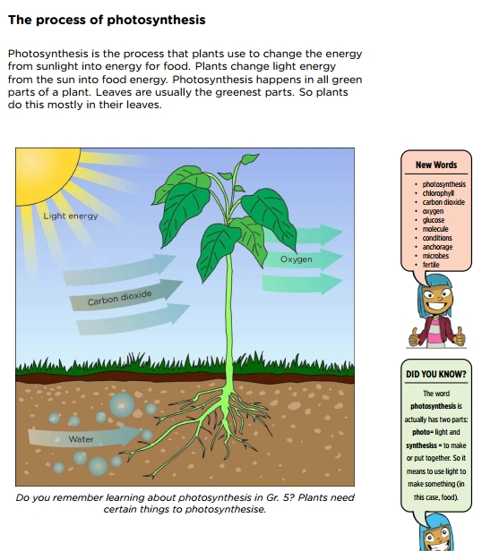 4 Natural Science & Technology Textbooks with Videos, Grades 4-6